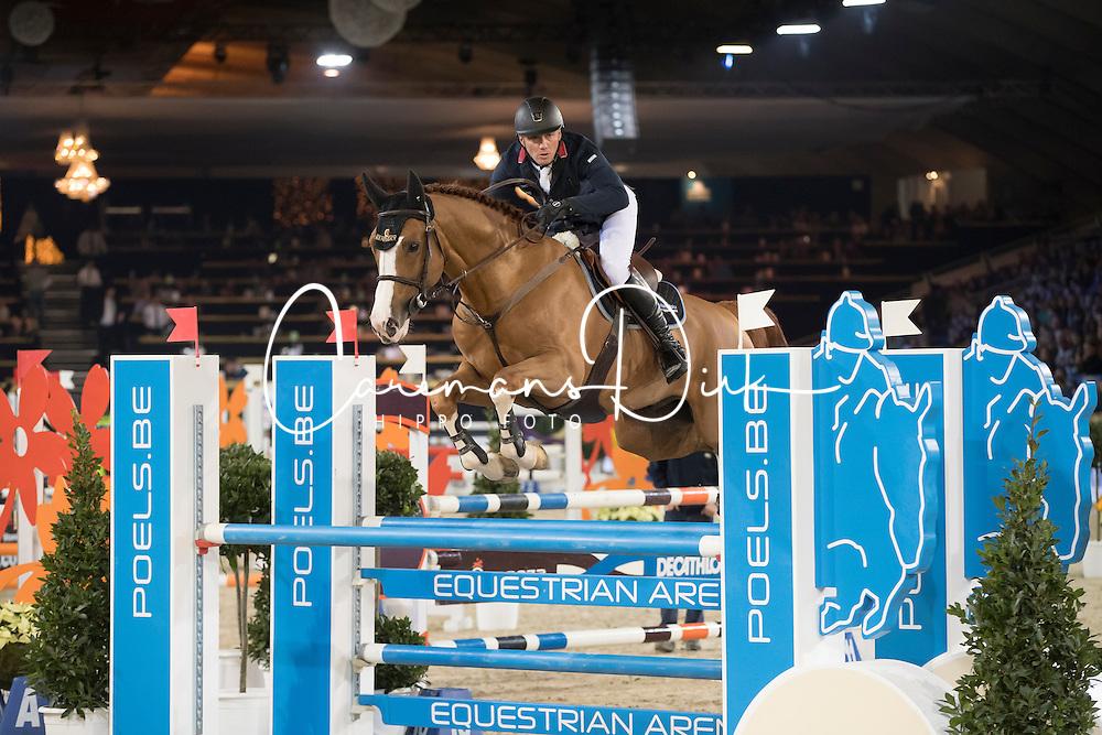 Clee Joe, GBR, De Flor 111 Z<br /> Young Stallions 5 years of age<br /> Vlaanderens Kerstjumping Memorial Eric Wauters<br /> &copy; Dirk Caremans<br /> 27/12/2016