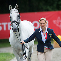 First Horse Inspection - FEI European Eventing Championships 2017 - Strzegom