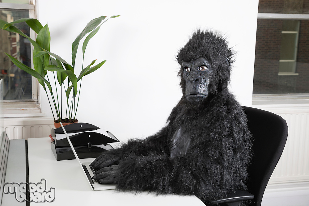 Side view of young man in gorilla costume using laptop at office
