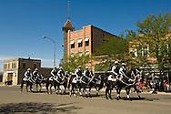 Little Bighorn Days parade, Black Horse Brigade, Hardin, Montana
