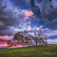 Dramatic clouds at sunset over a hill of oak trees, Sacramento County, California.