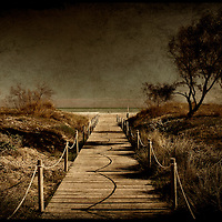 A footpath that goes to the beach