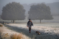 © Licensed to London News Pictures. 28/10/2019. London, UK. A woman walks her dogs through a frost and mist covered landscape on a bright winter morning in Richmond Park, London. The UK is due to see brighter weather over the next few days, following days of heavy rain which caused flooding in parts. Photo credit: Ben Cawthra/LNP