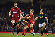 291114 Wales v South Africa