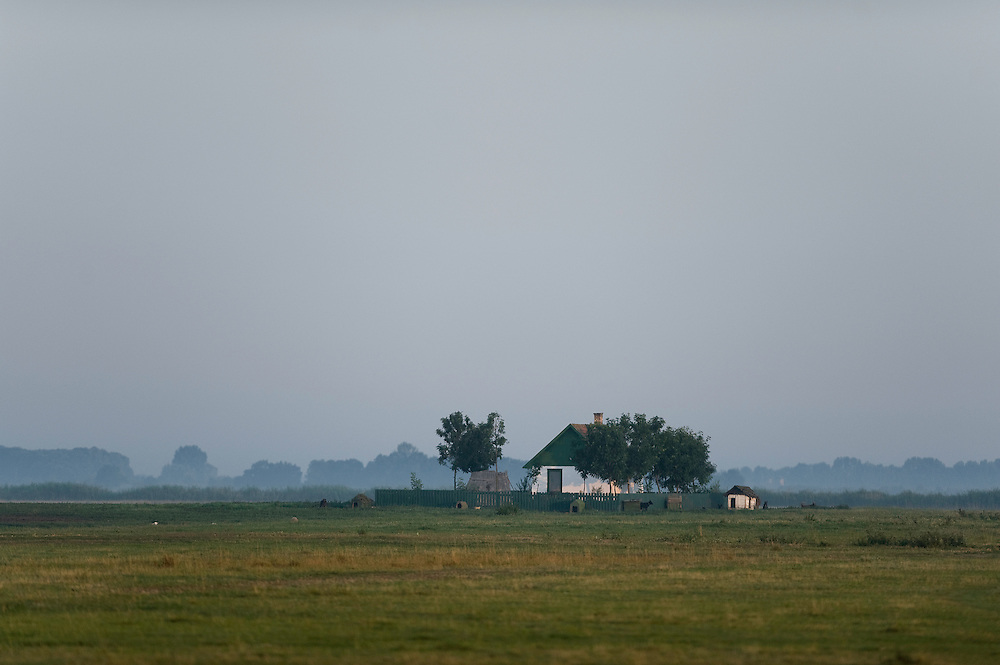 Early foggy morning landscape with a hut where the herdsmen live, Hortobagy National Park, Hungary