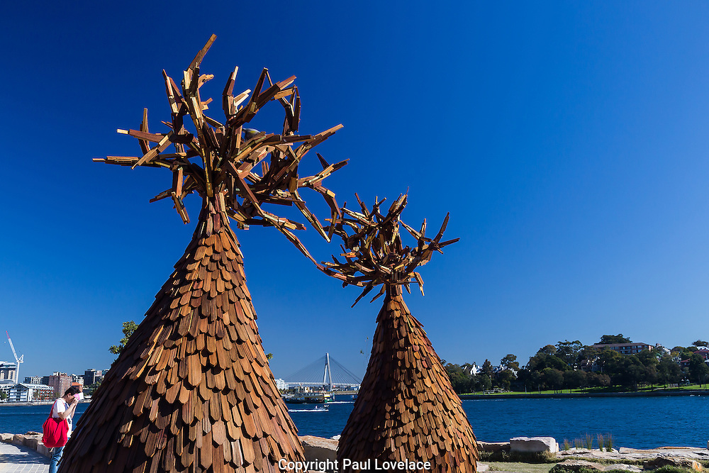 Sculpture at Barangaroo showing artwork titled The Grove by artist Margarita Sampson, 2014.The Grove is part of a series of works exploring the importance of our relationship with nature and community.The art show falls at the same time  as Barangaroo Reserve celebrates its first birthday.