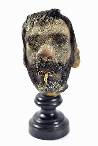 Nederland, Nijmegen, 19-1-2017De Museumwinkel in Nijmegen. De winkel heeft een nieuwe aanwinst  een 'shrunken head'. Het mensenhoofd is te koop voor 49.000 euro.Het gekrompen hoofd komt uit het Amazonegebied. Daar is het geprepareerd door Jivaro indianen. Zij hakten het hoofd af van hun vijand en bewerkten dit. Het hoofd werd vervolgens gebruikt als trofee. Foto: Flip Franssen