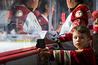 REGINA, SK - MAY 27: Acadie-Bathurst Titan fan at the Brandt Centre on May 27, 2018 in Regina, Canada. (Photo by Marissa Baecker/CHL Images)