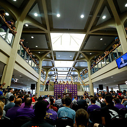 Mar 22, 2017; Baton Rouge, LA, USA; LSU Tigers head coach Will Wade during his introductory press conference at the LSU Student Union. Mandatory Credit: Derick E. Hingle-USA TODAY Sports