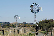 Canvey Island wind turbines, nature reserve, brownfield site.