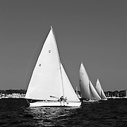Osprey, Vindex, Whistler, and Shona sailing in the Herreshoff S Class division of the Newport Yacht Club Tuesday night racing series.