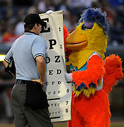 The Famous Chicken checks the umpire's eye sight inbetween the top and bottom of the fourth inning of a game against Fort Wayne on Saturday night at 5/3 Ballpark..Date Shot 9-3-2011.(Matt Gade | Grand Rapids Press)