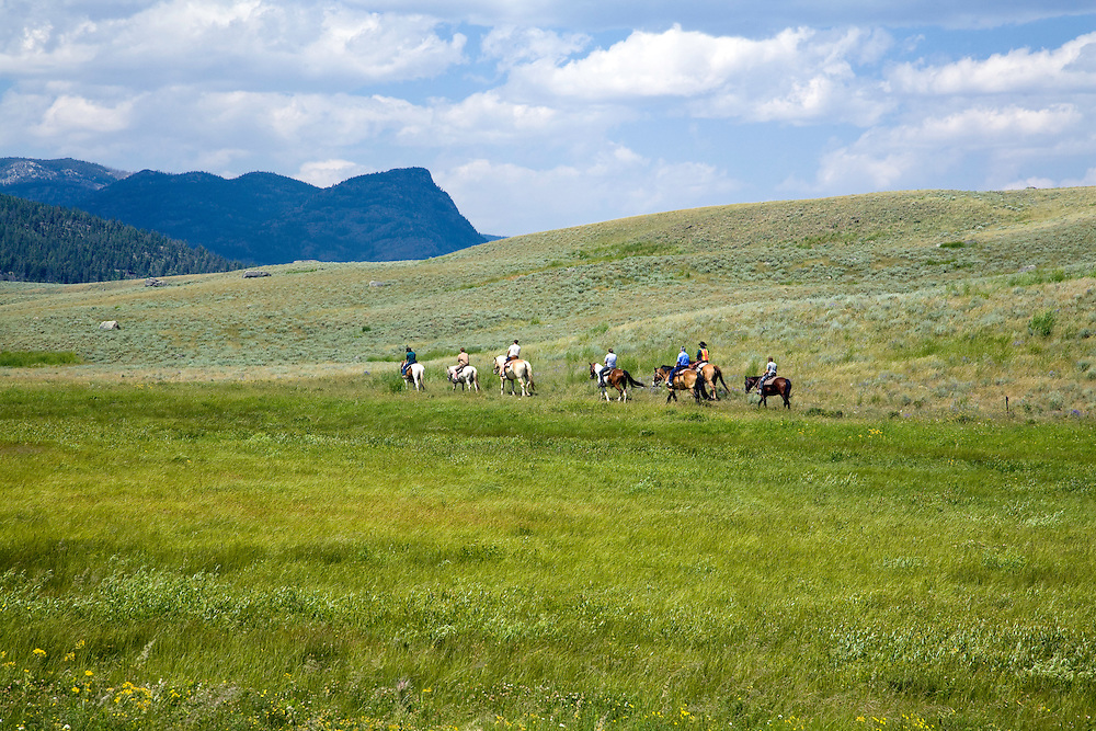 Yellowstone National Park, WY: Trailrides take visitors out into the wide open spaces that characterize the upper half of this spectacular park.
