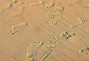 Footsteps on a sandy beach.