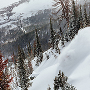 Tyler Hatcher blazes through untracked powder during a brief clearing while a winter storm covers the Teton backcountry near Jackson Hole Mountain Resort, Teton Village, Wyoming.