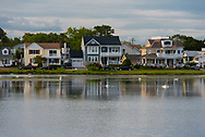 Houses on a lake with swans at the shore during late afternoon