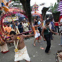 "Hindu devotees dance along their way to the sacred Batu Caves temple during the Thaipusam festival in Kuala Lumpur, Malaysia. Hindu devotees celebrate Thaipusam festival in honour of the Lord Murugan (also known as Lord Subramaniam). Thousands of Hindu devotees carried the milk pots and ""kavadi"" (a gaily decorated wooden or metal frame) walk barefoot up the temple's 272 steps to undergo penance in fulfilling vows made to Lord Murugan for answering their prayers."