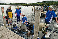 The Gilford Eagles team of Nick Cordas, Alex Landry, Tim Gentile, Brett Clairmont and driver John Woodaman come into the dock at Center Harbor with four fish in the hold caught during the NHIAA State Qualifier on Thursday afternoon.  (Karen Bobotas/for the Laconia Daily Sun)
