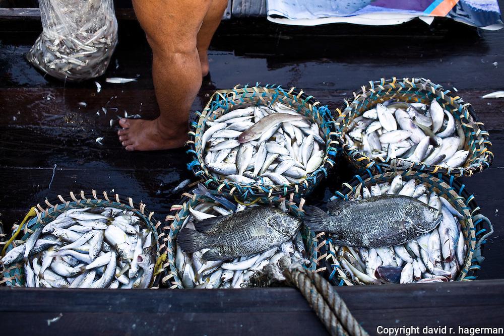 fishermen with their catch at Telok Pahang