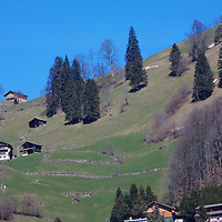 Homes & Farms dot the almost impossible slopes of mountains all over Switzerland.