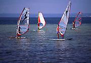 Szkola windsurfingu w Chalupach na Helu, 23-06-2005, fot: Piotr Gesicki..Windsurfing school in Chalupy village on Hel pennisula, Poland, 2005-06-23, photo: Piotr Gesicki. Hel pennisula on Baltic sea in Poland photo by Piotr Gesicki