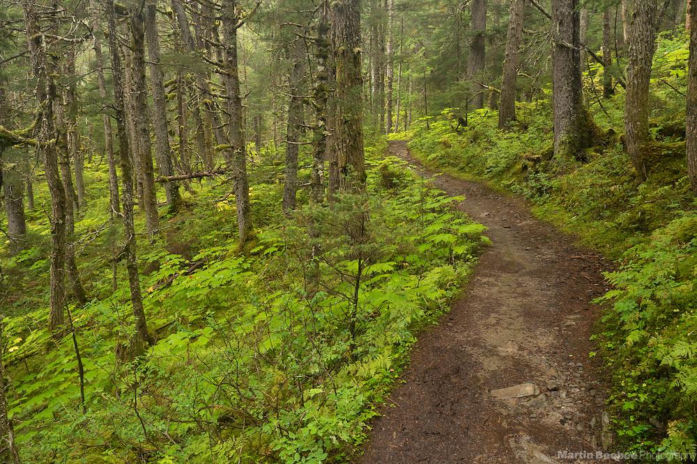 Lost Lake Trail, Chugach National Forest, Alaska