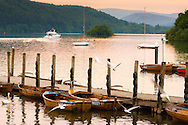 A boat sets off onto the peaceful waters of Windermere, Cumbria on a May evening.