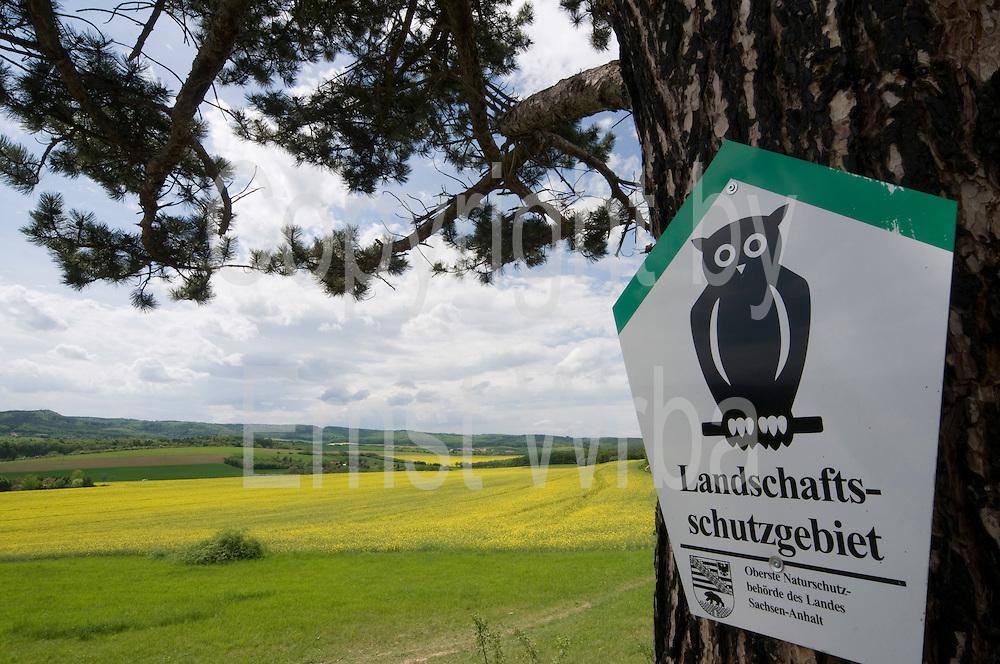 blühendes Rapsfeld, Schild Landschaftsschutzgebiet, Landschaft bei Timmenrode, Harz, Sachsen-Anhalt, Deutschland | landscape near Timmenrode, Harz, Saxony-Anhalt, Germany
