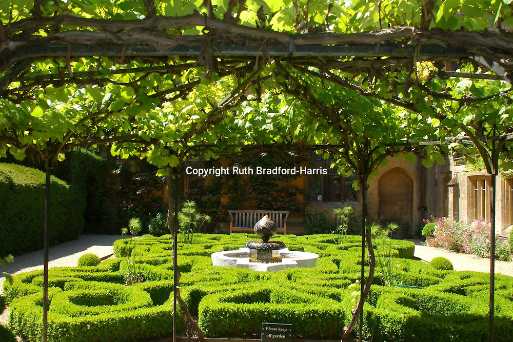 An intricate, curvacious box parterre with central Islamic style ceramic-tiled fountain,  glimpsed through a vine-covered pergola. The feathery green heads of exotic papyrus plants rise from pots at the four corners of the garden. <br />