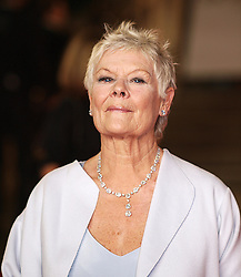 Judi Dench nominated  best leading actress for the Oscars 2014.<br /> British actress Dame Judi Dench arrives at the World Premiere of her latest James Bond film 'Skyfall', Royal Albert Hall, London, October 23, 2012. Photo by Max Nash / i-Images.