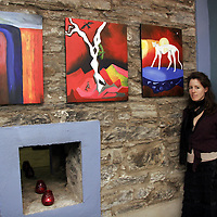 The underworld was the theme for Sue Walsh's pieces at the opening night of the Hidden Depths art exhibition in Ennistymon on Wednesday night.<br /> <br /> Photograph by Yvonne Vaughan.