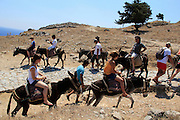 Lindos, beautiful white city on Rhodes Island. Tourists can get to the Akropolis and Athena Lindia sanctaury on donkey back. © Romano P. Riedo
