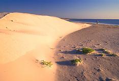 Laguna Madre Texas