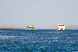 Charter boats at anchor in the main channel on Montgomery Reef.  At 292 square kilomters, Montgomery is Australia's largest inshore reef, and soon to become part of the Camden Sound Marine Park.