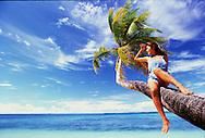 A girl sits on a coconut tree, Marshall islands, Majuro atoll