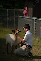 """Joe Garcia with his Tunis """"Mabel"""" during the Fitting and Show class on Sunday morning at the Belmont Fairgrounds 4H Fair.  (Karen Bobotas/for the Laconia Daily Sun)"""