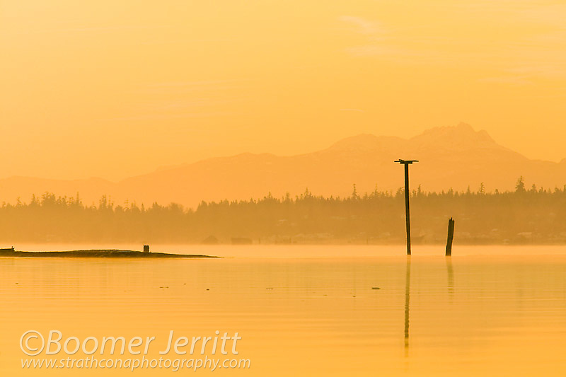 Comox Bay and Mount Arrowsmith bathed in subdued colors, await the rising sun.  Comox Valley, Vancouver Island, British Columbia, Canada.