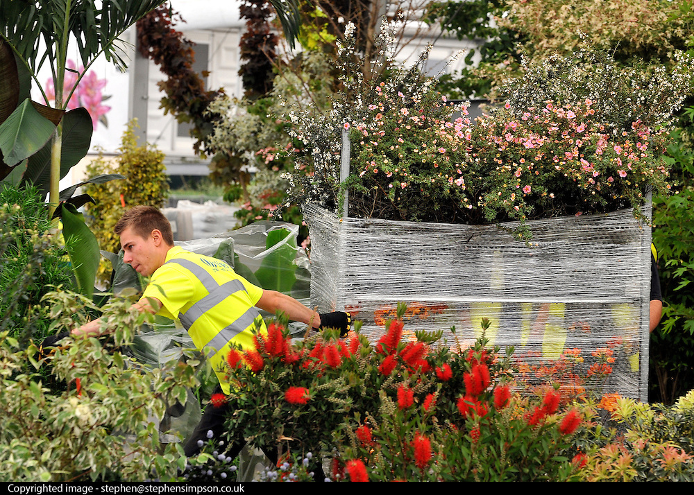 © under license to London News Pictures. LONDON, UK  19/05/2011.A delivery of flowers. Exhibitors ready their displays today (19 May 2011) ahead of The Chelsea Flower show in London. Every year the grounds of the Royal Hospital, London, are transformed into show gardens, inspirational small gardens and vibrant horticultural displays that make up the world's most famous flower show which runs from 24 May 2011 to 28 May 2011. Photo credit should read Stephen Simpson/LNP.