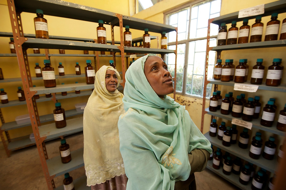 The community seed bank (CSB) in Harbu which was built and sponsored by Ethio Organic Seed Action (EOSA) to help farmers regain traditional varieties of crops and have a safety net against loss of crops in times of drought and crop failure. <br /> <br /> Members of the seed bank contribute seeds and can use the seeds for their crops. Included in the seed bank is a germplasm reserve, where seeds are stored in jars as a further means of preserving greater crop diversity. <br /> <br /> Seen in the germplasm reserve are CSB members and farmers Ansha Seid (turquoise scarf) and Seid Shiferan (tan scarf) looking at the jars of seeds. <br /> <br /> Contact: Genene Gezu<br /> Program Coordinator<br /> Ethio-Organic Seed Action (EOSA)<br /> Tel: +251 11 550 22 88<br /> Mobile: +251 91 1 79 56 22<br /> genenegezu@yahoo.com<br /> shigenene@gmail.com<br /> PO Box 5512<br /> Addis Aababa, Ethiopia