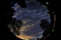 Star Trails looking Up (21:30-22:29). Composite of images  taken with a Nikon D850 camera and 8-15 mm fisheye lens (ISO 800, 10 mm, f/5.6, 30 sec)