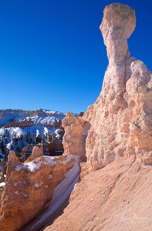 Morning light on eroded rock formations in winter along the Queen's Garden Trail, Bryce Canyon National Park, Utah