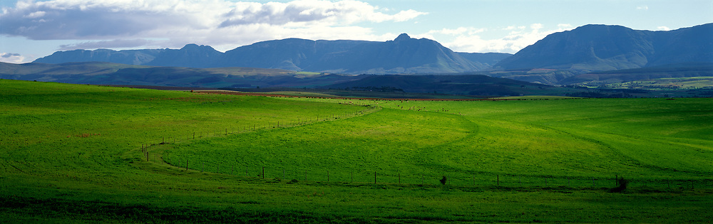 Green farm fields and mountains