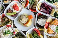 Meze at Kaplan Dag Restoran