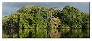 Rainforest at Lake Garzacocha, Ecuador.  Nikon D700, 70-200mm @ 120mm, f6.3, 1/500sec, ISO400, Aperture priority