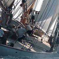 """ELEONORA est la réplique du schooner  """"Westward"""" qui avait été lancé au chantier  Herreshoff Manufacturing Co. in Bristol, Rhode Island, USA en 1910.  A l'époque WESTWARD était le schooner le plus rapide avec à sa barre le célèbre Charlie Barr.  Dessinée par Nathanael Greene Herreshoff, l'architecte qui a crée les vainqueurs des 6 America's Cup de 1893 à 1920."""