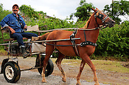 Horse and cart near La Union,  Pinar del Rio, Cuba.