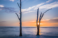 Sunsetting behind one of the forked, bare trees standing stalwartly against the beating tide.  Stump Pass near Englewood, Florida.