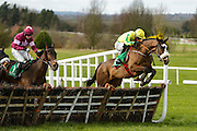 Ladbrokes Ireland Boyne Hurdle at Navan Race Course, 14th February 2016<br /> Gordon Elliott trained Automated with Jack Kennedy in the saddle clears the last hurdle and goes on to win the Get Your 2016 Navan Membership Maiden Hurdle<br /> Photo: David Mullen / www.quirke.ie ©John Quirke Photography, Unit 17, Blackcastle Shopping Cte. Navan. Co. Meath. 046-9079044 / 087-2579454.