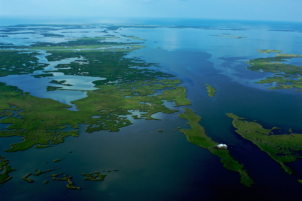 Aerial Shot of Vanishing Louisiana Coastal Wetlands South of Cocodrie, Louisiana