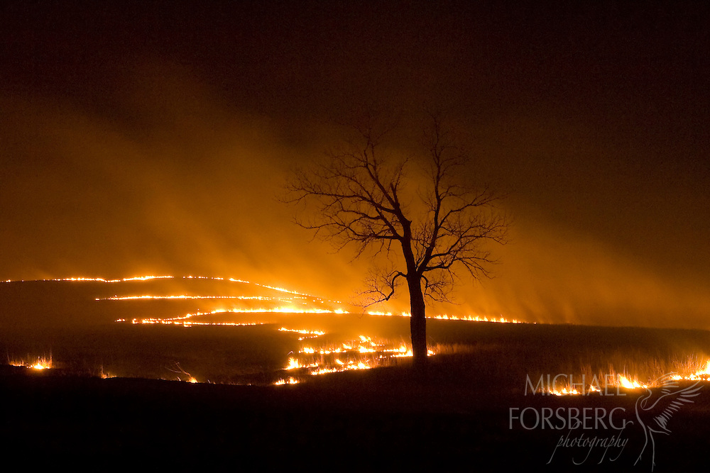 A prescribed burn lights the prairie at night in the Flint Hills of eastern Kansas.